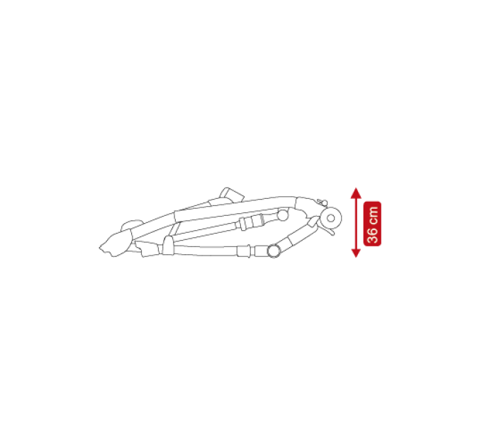 CAMARELO BALEO SHINE